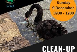 Clean-up Lake Burley Griffin Day